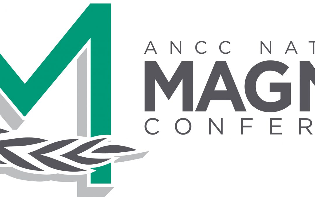 2017 Magnet Conference® Consultations