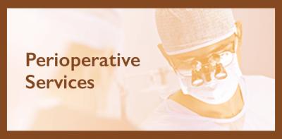 Director of Perioperative Services